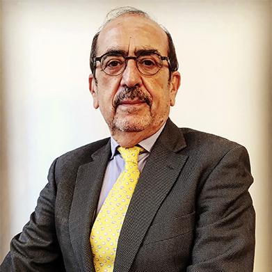 Javier Borrego Borrego